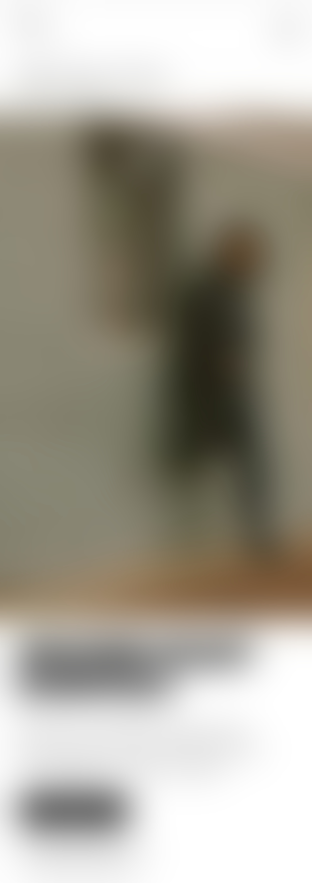 Intentionally blurred image.